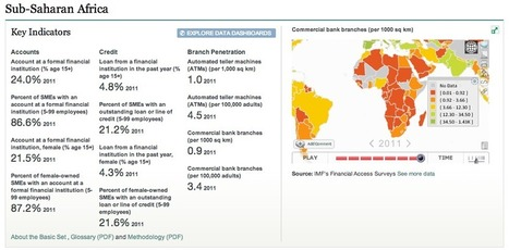 G20 Financial Inclusion Indicators: The New Data Sandbox | Center ... | SME News Roundup | Scoop.it
