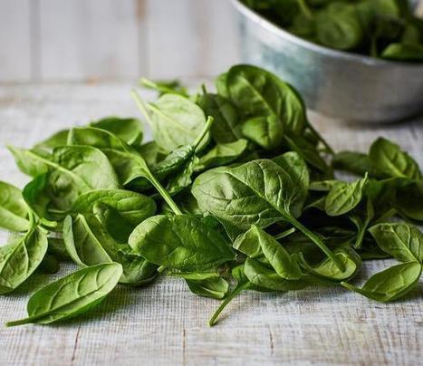 Top 10 Supplements for Vegans and Vegetarians | Supplements Today | Scoop.it