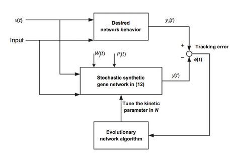 A Unifying Mathematical Framework for Genetic Robustness, Environmenta | SynBioFromLeukipposInstitute | Scoop.it