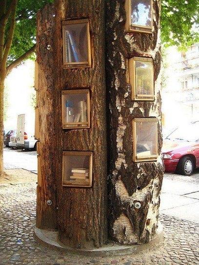 Απίστευτο! Αληθινό δέντρο... βιβλιοθήκη! | facebook | Scoop.it