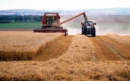 Agriculture : 9.000 emplois non pourvus dans des métiers très divers - RTL.fr | ANEFA | Scoop.it