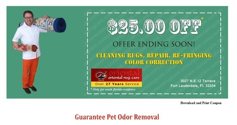 Coupon | Oriental Rug Cleaning | Scoop.it