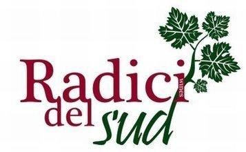 all'edizione 2013 di Radici del Sud! | Blog di Vino al Vino