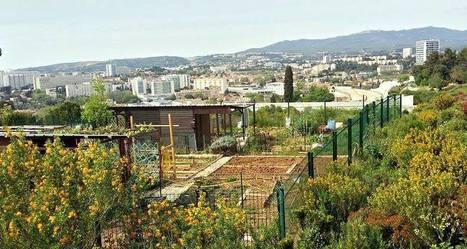 Marseille dans le top 3 français des villes avec le plus de jardins partagés! - Made In Marseille | (Culture)s (Urbaine)s | Scoop.it