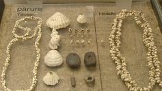 Série archéologique: Enquête à Téviec, sur les traces des Péquart - Francetv info | Mégalithismes | Scoop.it