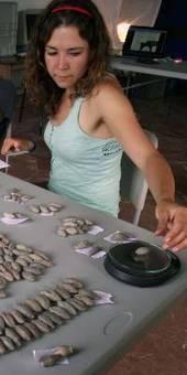 Honderos baleares. Estudio de casi un millar de proyectiles de plomo del siglo I a.C. | Mundo Clásico | Scoop.it