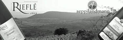 Paul Rieflé, Pinot noir, Invitation au Bonheur - Oenodidacte.com | Epicure : Vins, gastronomie et belles choses | Scoop.it