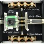 Robotic Camera Mimics Eye Movement - Technabob (blog) | Futuristic Intelligent Robotics | Scoop.it