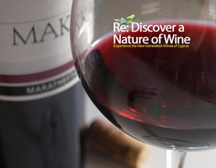 Makkas Maratheftiko on the great path to Maturity | Wine Cyprus | Scoop.it