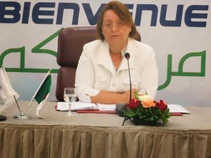 Algérie : Vodafone se déclare intéressé par Mobilis - Agence Ecofin | TelecomNewsMENA | Scoop.it