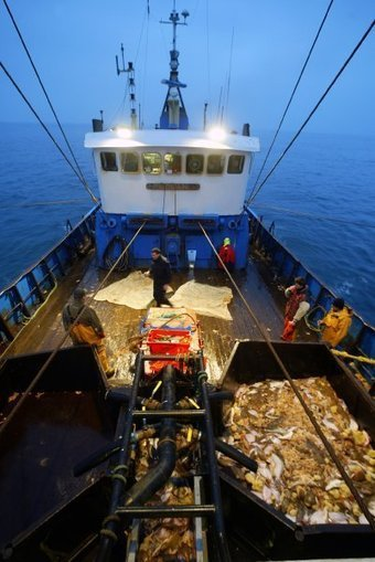 Reeling In the Trawlers: EU Takes On Overfishing - SPIEGEL ONLINE | Farming, Forests, Water, Fishing and Environment | Scoop.it