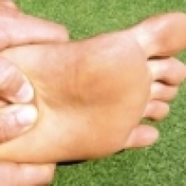4 Tips to Prevent from Plantar Fasciitis   Fitness Republic   RX News   Articles for Bach RX Twitter Feed   Scoop.it