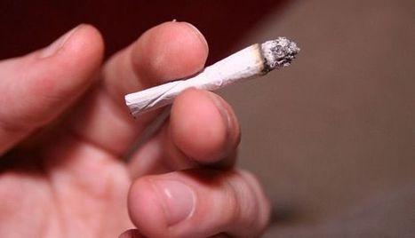 El tabaco de liar es más perjudicial | Apasionadas por la salud y lo natural | Scoop.it