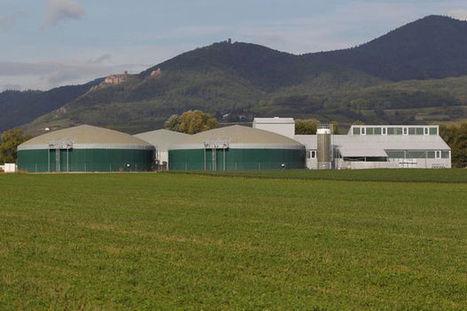 L'utilisation de méthaniseurs par les agriculteurs fait débat en France - Le Vif | Centre méthanisation et valorisation fumier et déchets verts (centres équestres, élevages…) | Scoop.it