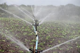 El regadío: Medidas de ahorro y eficiencia energética en la agricultura de regadío | Agroindustria Sostenible | Scoop.it