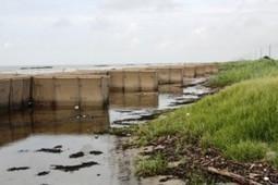 Louisiana: Hesco Baskets helping coastal restoration, its original ... | Fish Habitat | Scoop.it