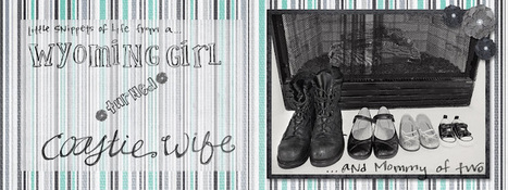 Wyoming Girl *turned* Coastie Wife: LandCentral Twitter | Annie Haven | Haven Brand | Scoop.it