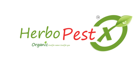 Herbal Pest Repellent Products in India | Herbal Pest Control Products | Eco Friendly Pest Repellent Products in Asia | Waterproofing Services in Hyderabad | Scoop.it