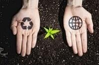 14 Green Business Ideas for Eco-Friendly Entrepreneurs   Entrepreneur & Soul Leader   Scoop.it
