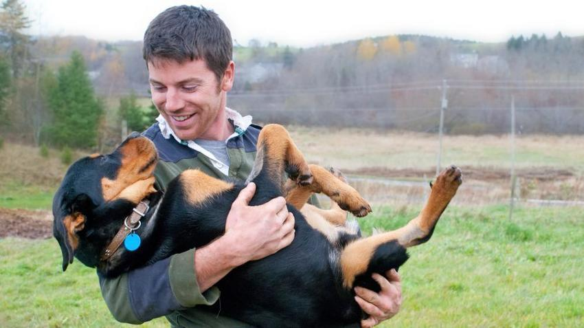 L'amour entre l'homme et le chien prouvé par la biologie