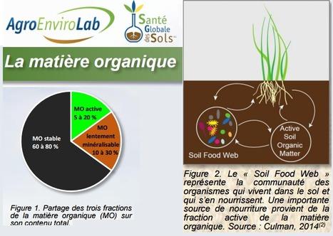 L'Évaluation de la santé globale des sols, par Agro Enviro Lab, Laboratoire de La Pocatière Québec | MOF Matière Organique Fugace réactive du sol | Scoop.it