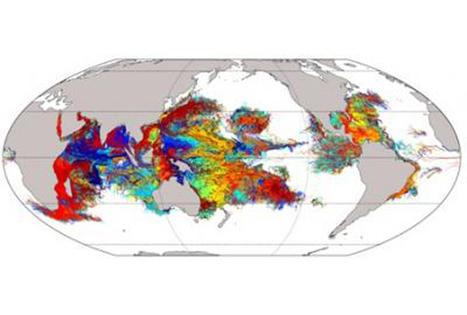 Epic Ocean-spanning Voyages Of Coral Larvae Revealed - RedOrbit | Amocean OceanScoops | Scoop.it