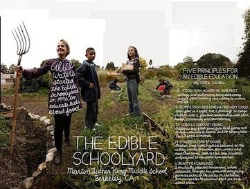 Lexicon Of Sustainability 2012 Calendar — City Farmer News | Green Gnome Garden News | Scoop.it