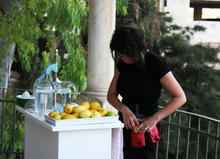 Exhibition review: when lemons have more freedom than humans | Occupied Palestine | Scoop.it