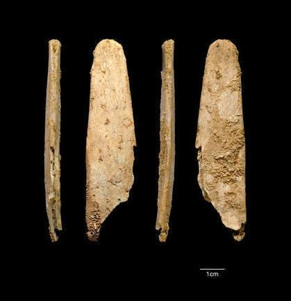 Hace 50.000 años los neandertales ya fabricaban herramientas que se usan hoy en día - RTVE.es   Recursos educativos CCSS   Scoop.it