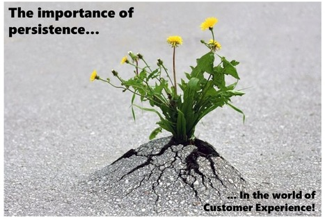 Persistence: The Essential Characteristic of Customer Experience Leaders | Guest Service | Scoop.it