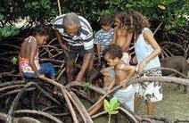 Traditional Owners | HSIE Stage 3- Great Barrier Reef Case Study (Environments) | Scoop.it