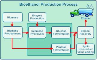 Making Bioethanol: Is a U.S. Biorefinery Industry Emerging? | Amazing Science | Scoop.it