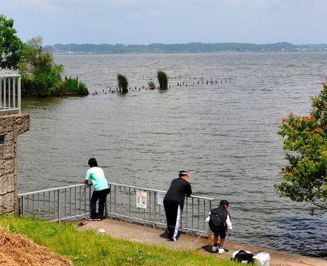 Radioactive river mud threatens lakes, Tokyo Bay - AJW by The Asahi Shimbun | Water Stewardship | Scoop.it