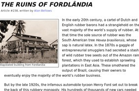 The Ruins of Fordlândia | Hevea brasiliensis | Scoop.it