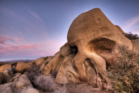 The Slow Creep of Time Reveals a Skull Emerging from the Earth | Strange days indeed... | Scoop.it