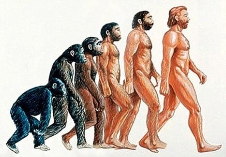 Racialized Representations of Evolution   AntiRacism & Privilege   Scoop.it
