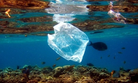 We could end up with 'as much plastic in our oceans as fish' | Sustain Our Earth | Scoop.it