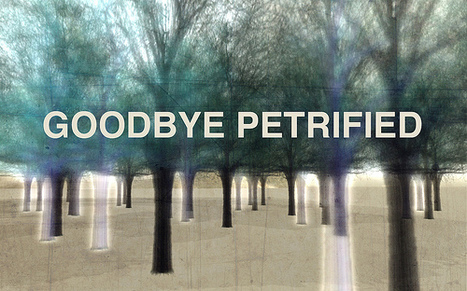 Goodbye Petrified | Metaverse places | Scoop.it