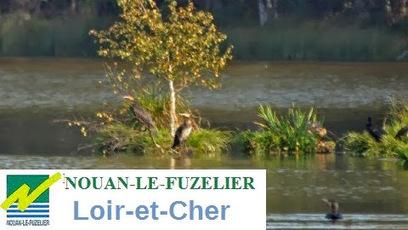 Nouan-le-Fuzelier sur Google+ | Autour de Nouan-le-Fuzelier | Scoop.it