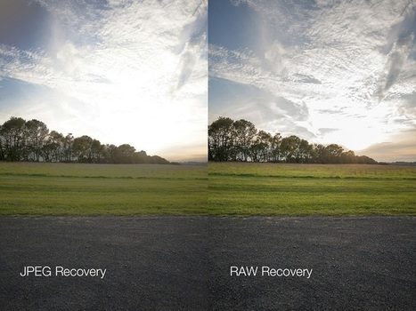 Why to use RAW formats for shooting   Photography and Photo Gears   Scoop.it