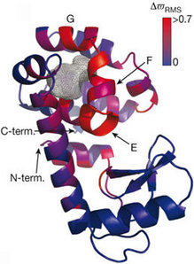 Making invisible proteins visible : PSI-Nature Structural Biology Knowledgebase | My Research Interests | Scoop.it