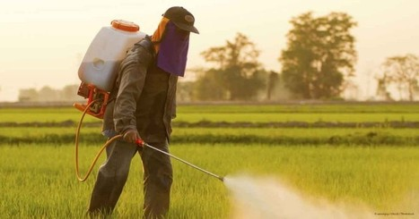 India Insecticides |India Herbicides Market|India Fungicides Industry | Healthcare Market Research Reports | Scoop.it