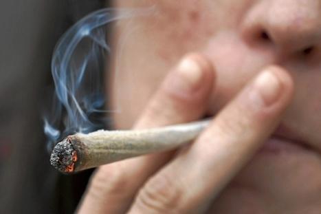 Fumar marihuana desde los 11 años lastra la inteligencia | Apasionadas por la salud y lo natural | Scoop.it
