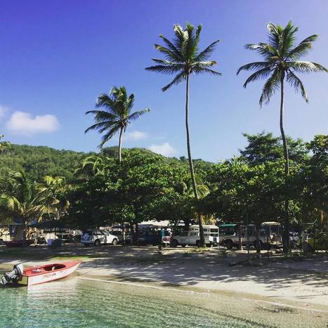 "@tomcroucher on Instagram: ""#bequia #caribbean"" 