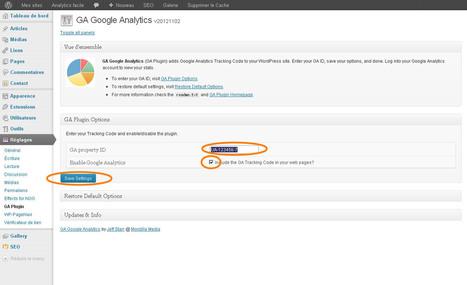 Et le meilleur plugin Google Analytics pour Wordpress est... - Analytics facile | Outils de visibilité | Scoop.it