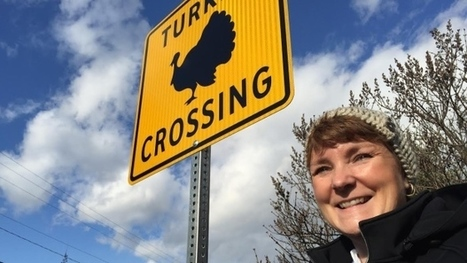 Turkey trouble in Castlegar leads to creation of unique road signs | This Gives Me Hope | Scoop.it