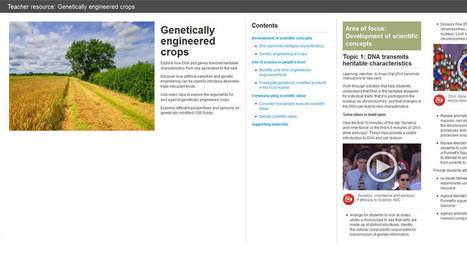 Genetically engineered crops | STEM education and the curriculum | Scoop.it