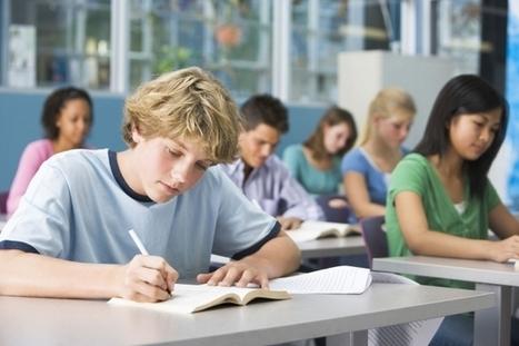 Testez votre niveau de français   Pour la classe de FLE   Scoop.it