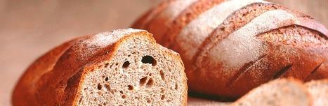 Carence en iode malgré l'enrichissement du sel des boulangers | Nutrition, Santé & Action | Scoop.it