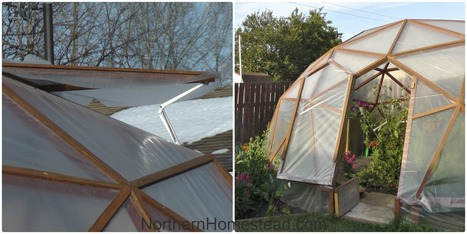How to Build a GeoDome Greenhouse - Northern Homestead | Societal Resilience, Foodproduction, Mobility, Living, Logistics, Infrastructure | Scoop.it